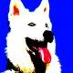02-idea-regalo-natale-cuccioli-animali-domestici-migliori-amici-cani-gatti-quadri-dipinti-a-mano-ritratti-moderni-pop-art-arredamento