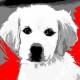 05-idea-regalo-natale-cuccioli-animali-domestici-migliori-amici-cani-gatti-quadri-dipinti-a-mano-ritratti-moderni-pop-art-arredamento