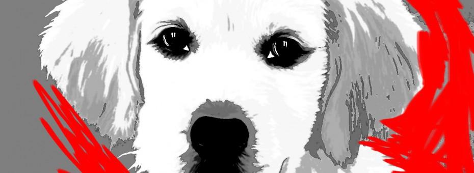 05-idea-regalo-natale-cuccioli-animali-domestici-migliori-amici-cani-gatti- quadri-dipinti-a-mano-ritratti-moderni-pop-art-arredamento-930x340.jpg
