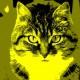 11-idea-regalo-natale-cuccioli-animali-domestici-migliori-amici-cani-gatti-quadri-dipinti-a-mano-ritratti-moderni-pop-art-arredamento