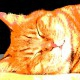 12-idea-regalo-natale-cuccioli-animali-domestici-migliori-amici-cani-gatti-quadri-dipinti-a-mano-ritratti-moderni-pop-art-arredamento